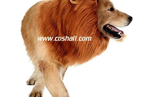 Most Realistic and Funniest Pet Costume for Dogs, Perfect Fitting, Wig Made of Wool Material